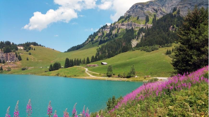 Pays de Savoie : bilan positif pour la saison d'été
