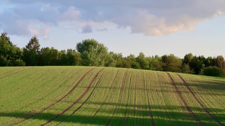 L'agriculture se féminise et rajeunit dans la région
