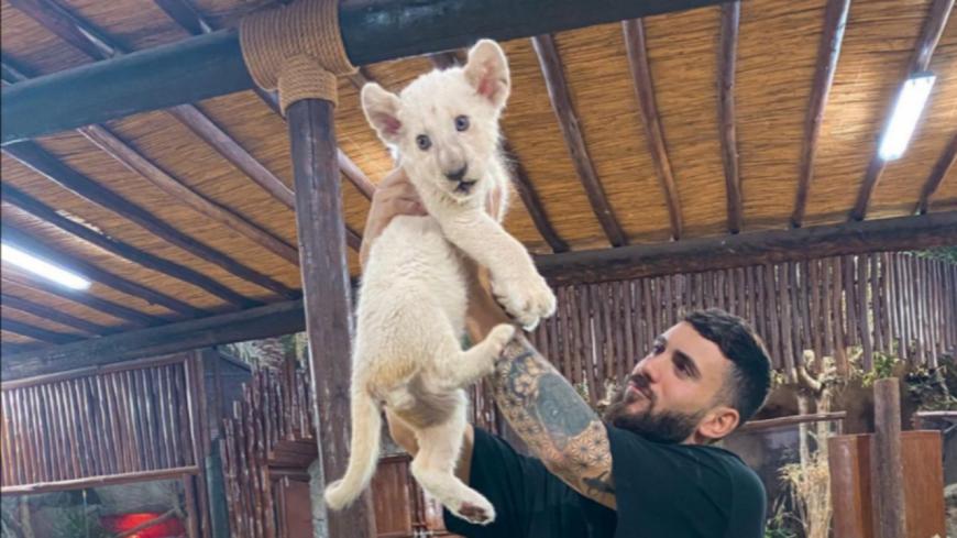 L'influenceur Illan Cto crée la polémique en prenant des photos avec des animaux sauvages