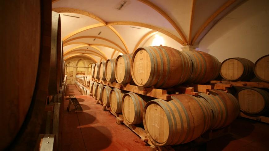 La récolte 2019 des vins de Savoie très qualitative