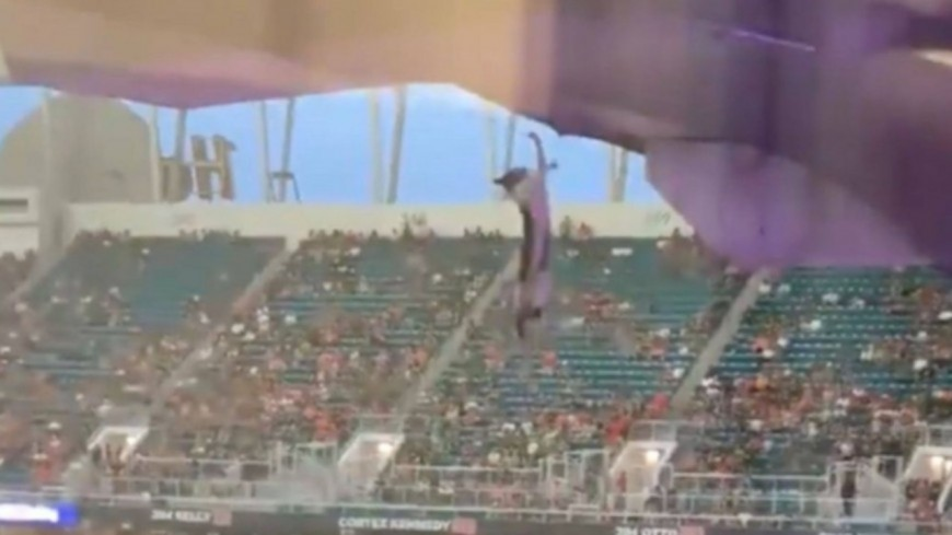 Insolite - Des supporters de football sauvent la vie d'un chat ! (vidéo)