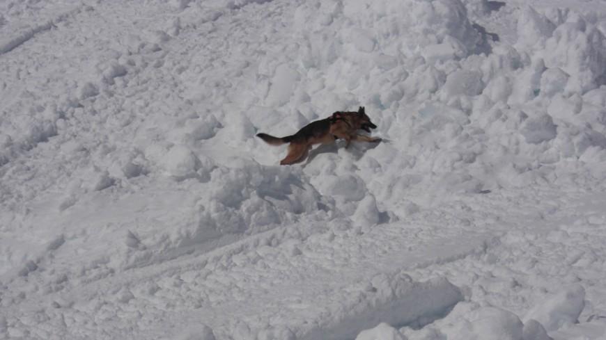 Le risque d'avalanche encore élevé en Savoie