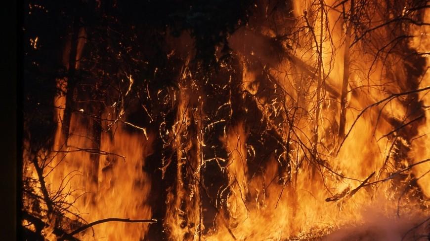 Un feu de broussailles à Aussois