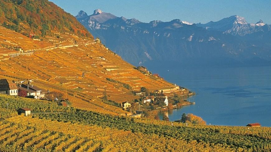 Sécheresse record cet hiver en Suisse Romande