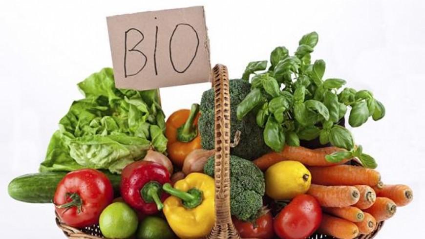 Cultiver des légumes en ville, c'est possible !