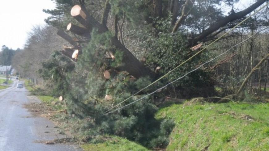 La météo fait de nouveaux dégâts dans la région