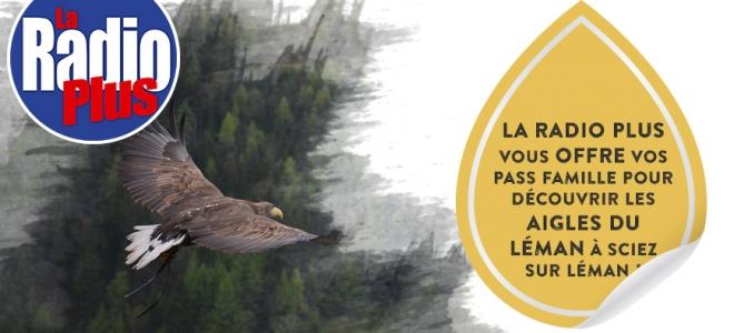 """Découvrez en famille, le parc """"Les aigles du Léman"""" à Sciez"""
